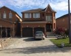 exterior landscape design 225P
