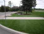 exterior landscape design 297